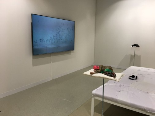 Stuart Middleton, Custard Wings (2018), Installation view at Statements, Art Basel 2018.jpg