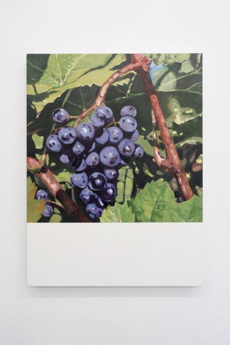 pinot noir grapes 80 x 60